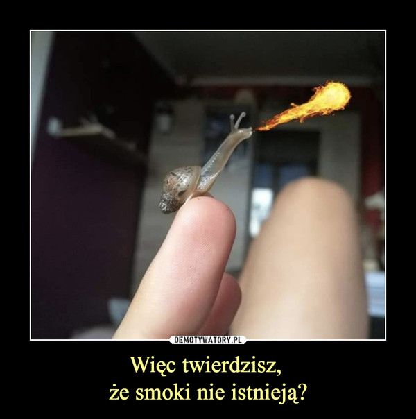 Więc twierdzisz, że smoki nie istnieją? –
