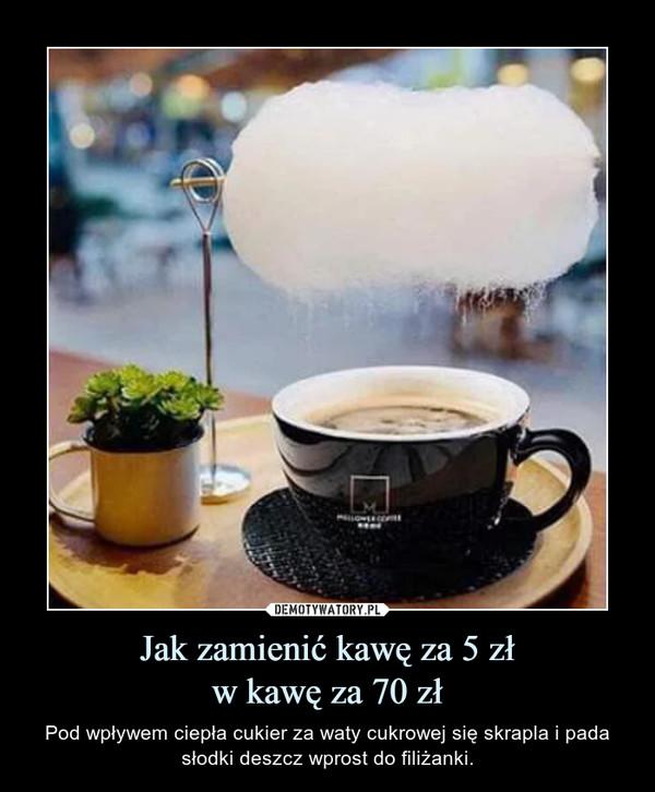 Jak zamienić kawę za 5 złw kawę za 70 zł – Pod wpływem ciepła cukier za waty cukrowej się skrapla i pada słodki deszcz wprost do filiżanki.