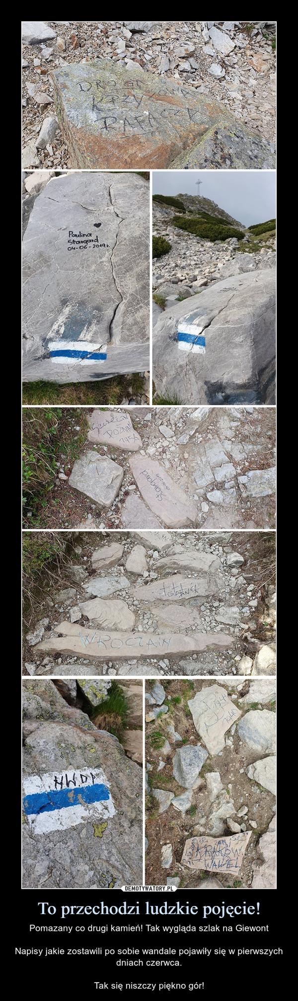 To przechodzi ludzkie pojęcie! – Pomazany co drugi kamień! Tak wygląda szlak na GiewontNapisy jakie zostawili po sobie wandale pojawiły się w pierwszych dniach czerwca.Tak się niszczy piękno gór!