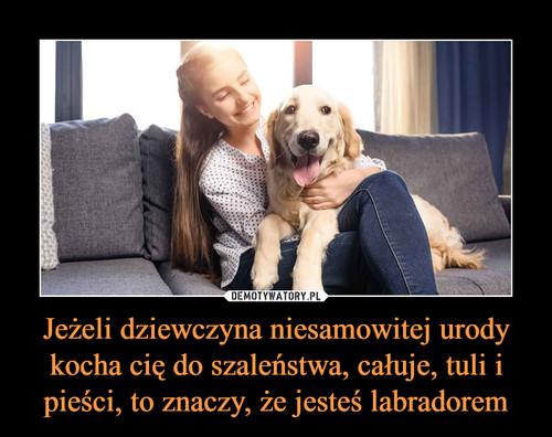 Jeżeli dziewczyna niesamowitej urody kocha cię do szaleństwa, całuje, tuli i pieści, to znaczy, że jesteś labradorem