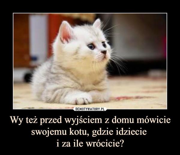 Wy też przed wyjściem z domu mówicie swojemu kotu, gdzie idziecie i za ile wrócicie? –