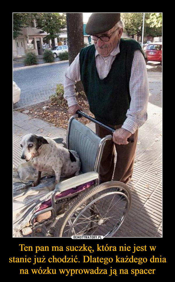 Ten pan ma suczkę, która nie jest w stanie już chodzić. Dlatego każdego dnia na wózku wyprowadza ją na spacer –