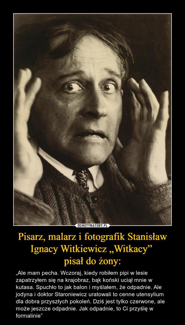 """Pisarz, malarz i fotografik Stanisław Ignacy Witkiewicz """"Witkacy"""" pisał do żony: – """"Ale mam pecha. Wczoraj, kiedy robiłem pipi w lesie zapatrzyłem się na krajobraz, bąk koński uciął mnie w kutasa. Spuchło to jak balon i myślałem, że odpadnie. Ale jodyna i doktor Staroniewicz uratowali to cenne utensylium dla dobra przyszłych pokoleń. Dziś jest tylko czerwone, ale może jeszcze odpadnie. Jak odpadnie, to Ci przyślę w formalinie"""""""