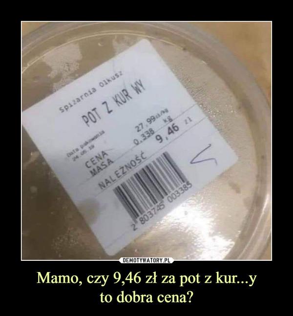 Mamo, czy 9,46 zł za pot z kur...yto dobra cena? –