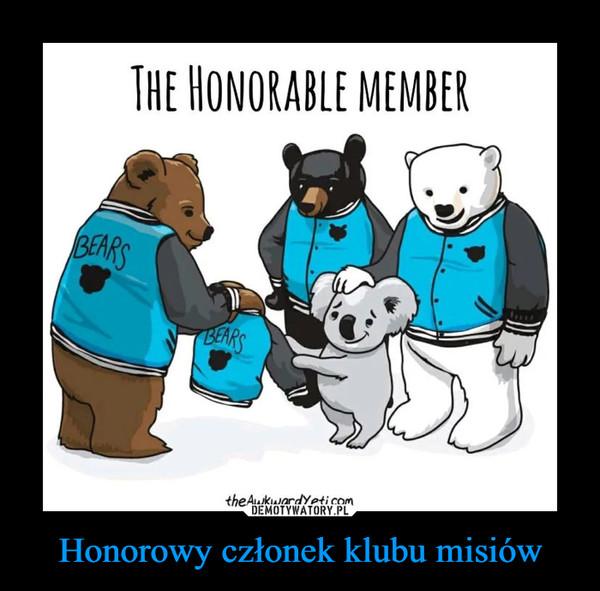 Honorowy członek klubu misiów –