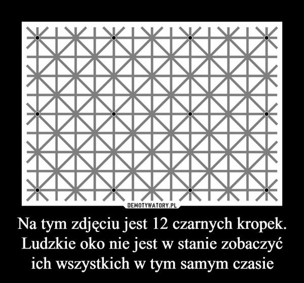 Na tym zdjęciu jest 12 czarnych kropek. Ludzkie oko nie jest w stanie zobaczyć ich wszystkich w tym samym czasie –