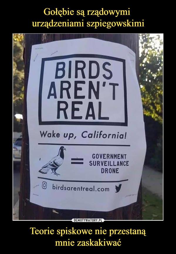 Teorie spiskowe nie przestanąmnie zaskakiwać –  Birds aren't real Wake up Califotnia Government surveillance drone