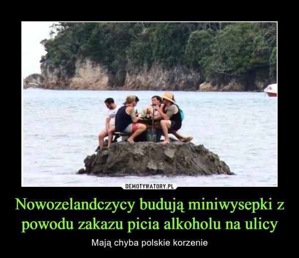 Nowozelandczycy budują miniwysepki z powodu zakazu picia alkoholu na ulicy – Mają chyba polskie korzenie