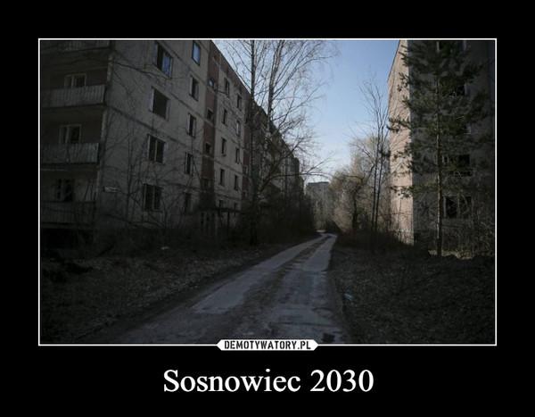 Sosnowiec 2030 –