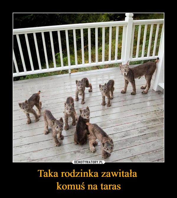 Taka rodzinka zawitała komuś na taras –