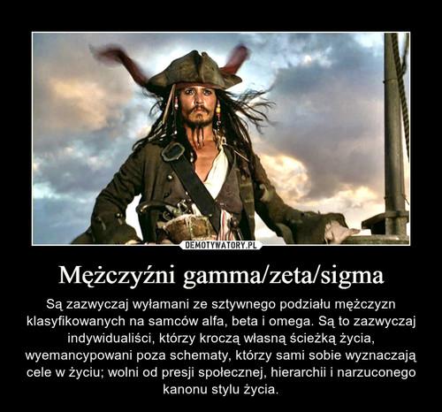 Mężczyźni gamma/zeta/sigma