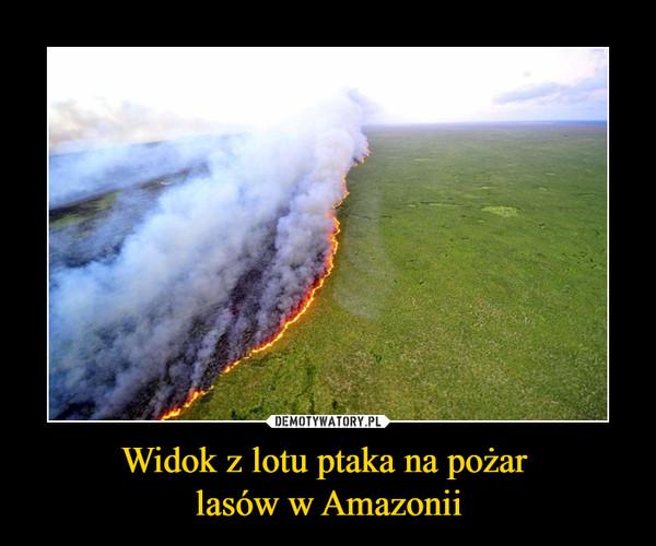 Widok z lotu ptaka na pożar lasów w Amazonii –