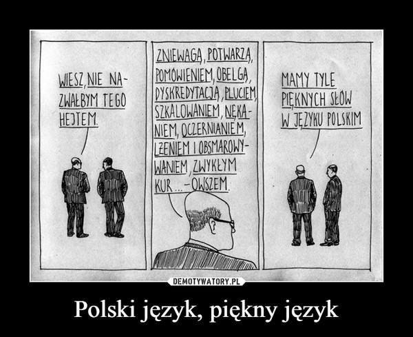 Polski język, piękny język –  WIESZ NIE NAZWAŁBYM TEGO HEJTEMZNIEWAGĄ, POTWARZĄ, POMÓWIENIEM, OBELGĄ, DYSKREDYTACJĄ, PLUCIEM, SZKALOWANIEM, NĘKANIEM, OCZERNIANIEM,ŁŻENIEM I OBSMAROWYWANIEM, ZWYKŁYM KUR... OWSZEM. MAMY TYLE PIĘKNYCH SŁÓW W JĘZYKU POLSKIM