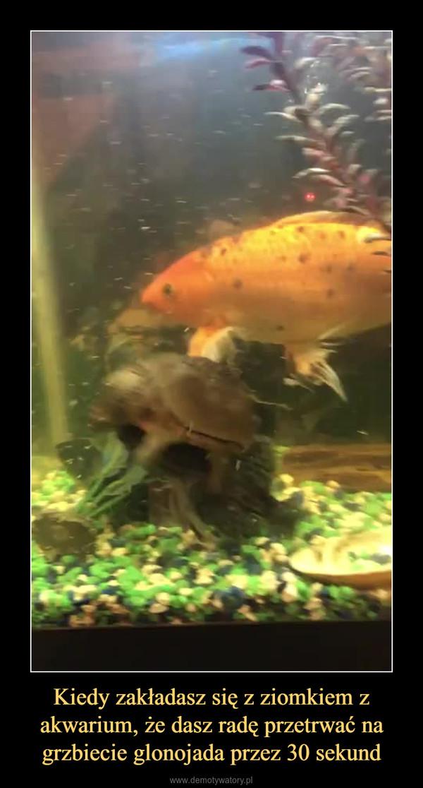 Kiedy zakładasz się z ziomkiem z akwarium, że dasz radę przetrwać na grzbiecie glonojada przez 30 sekund –