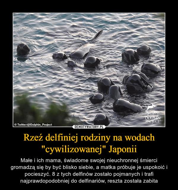 """Rzeź delfiniej rodziny na wodach """"cywilizowanej"""" Japonii – Małe i ich mama, świadome swojej nieuchronnej śmierci gromadzą się by być blisko siebie, a matka próbuje je uspokoić i pocieszyć. 8 z tych delfinów zostało pojmanych i trafi najprawdopodobniej do delfinariów, reszta została zabita"""