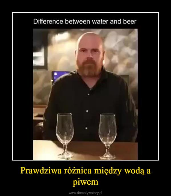 Prawdziwa różnica między wodą a piwem –