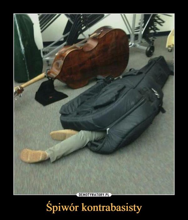Śpiwór kontrabasisty –
