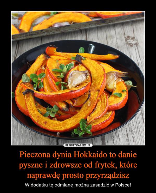 Pieczona dynia Hokkaido to danie pyszne i zdrowsze od frytek, które naprawdę prosto przyrządzisz – W dodatku tę odmianę można zasadzić w Polsce!
