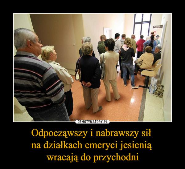 Odpocząwszy i nabrawszy sił na działkach emeryci jesienią wracają do przychodni –