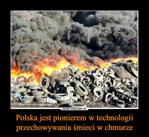 Polska jest pionierem w technologii przechowywania śmieci w chmurze