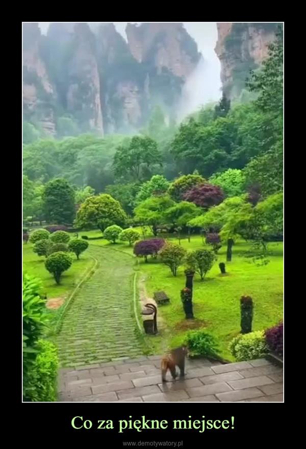 Co za piękne miejsce! –