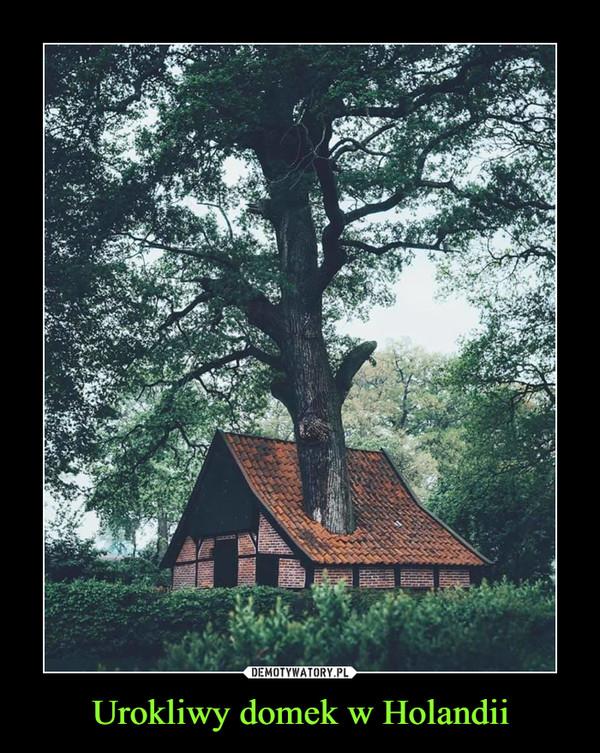 Urokliwy domek w Holandii –