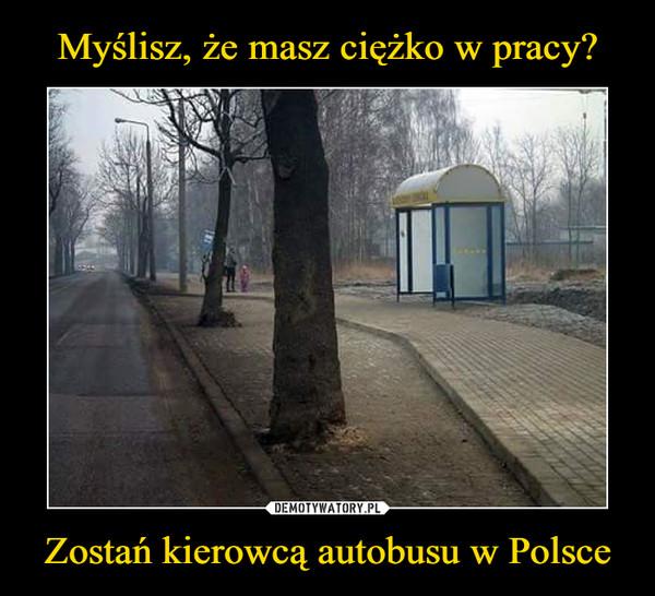 Zostań kierowcą autobusu w Polsce –