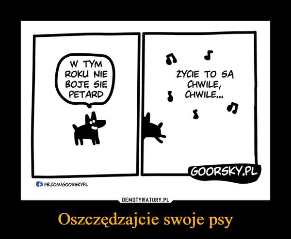 Oszczędzajcie swoje psy –  W TYM ROKU NIE BOJĘ SIĘ PETARDŻYCIE TO SĄ CHWILE, CHWILE...GOORSKY.PL