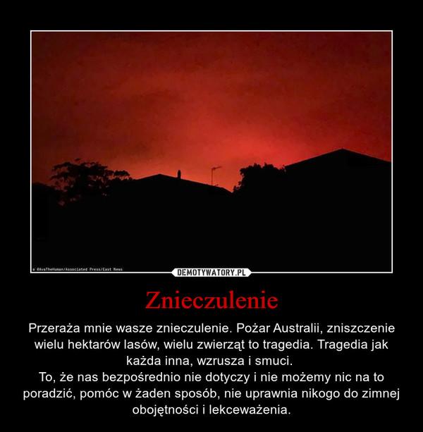 Znieczulenie – Przeraża mnie wasze znieczulenie. Pożar Australii, zniszczenie wielu hektarów lasów, wielu zwierząt to tragedia. Tragedia jak każda inna, wzrusza i smuci. To, że nas bezpośrednio nie dotyczy i nie możemy nic na to poradzić, pomóc w żaden sposób, nie uprawnia nikogo do zimnej obojętności i lekceważenia.