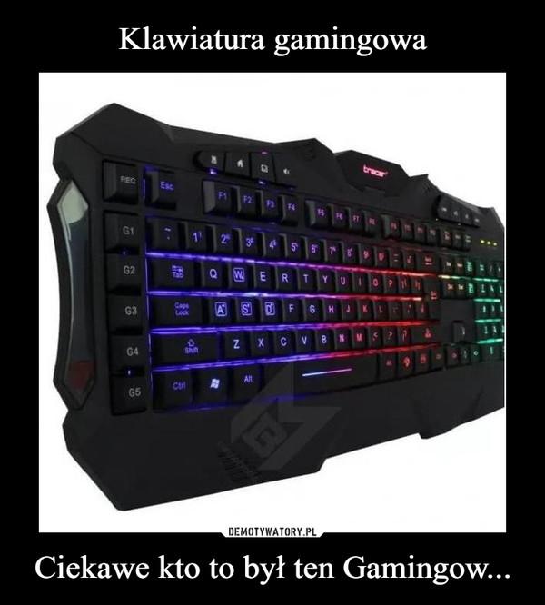 Ciekawe kto to był ten Gamingow... –