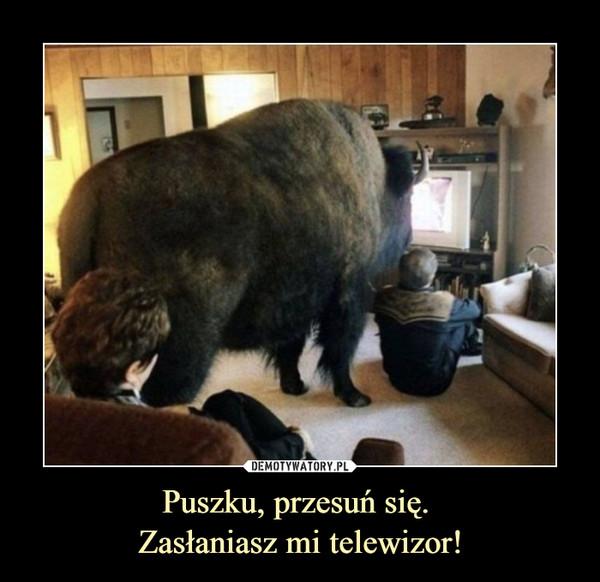Puszku, przesuń się. Zasłaniasz mi telewizor! –