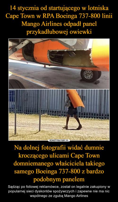 14 stycznia od startującego w lotniska Cape Town w RPA Boeinga 737-800 linii Mango Airlines odpadł panel przykadłubowej owiewki Na dolnej fotografii widać dumnie kroczącego ulicami Cape Town domniemanego właściciela takiego samego Boeinga 737-800 z bardzo podobnym panelem