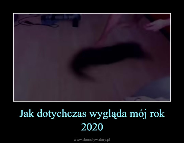 Jak dotychczas wygląda mój rok 2020 –