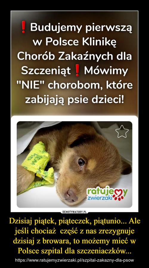 Dzisiaj piątek, piąteczek, piątunio... Ale jeśli chociaż  część z nas zrezygnuje dzisiaj z browara, to możemy mieć w Polsce szpital dla szczeniaczków...
