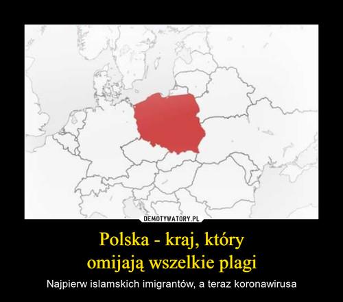 Polska - kraj, który omijają wszelkie plagi