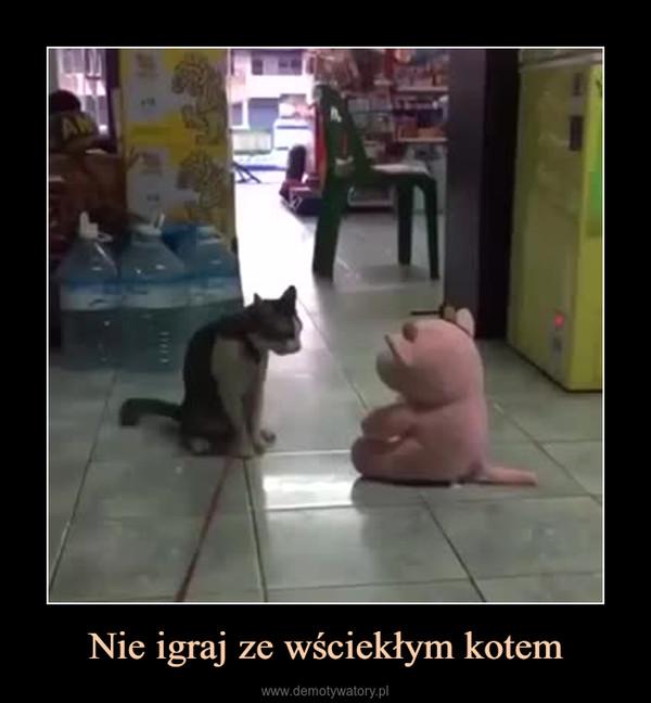 Nie igraj ze wściekłym kotem –