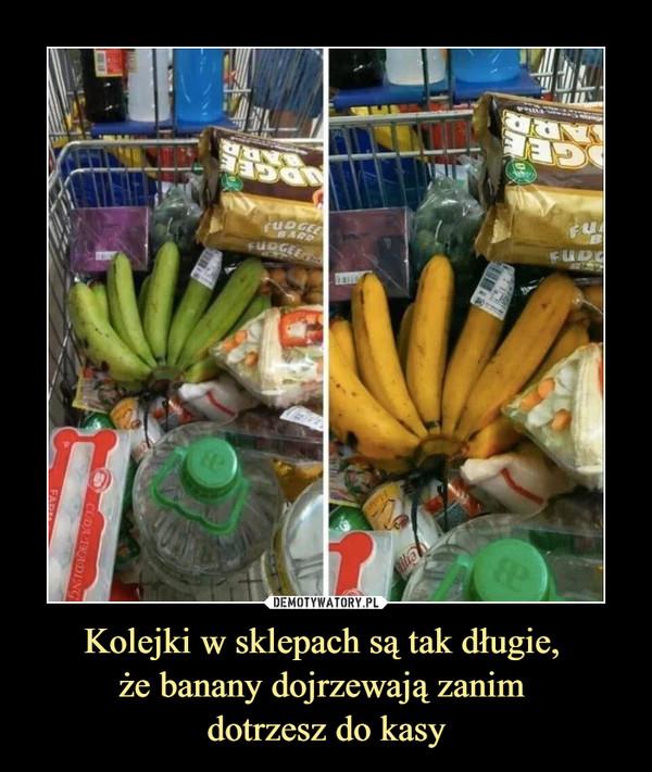 Kolejki w sklepach są tak długie, że banany dojrzewają zanim dotrzesz do kasy –