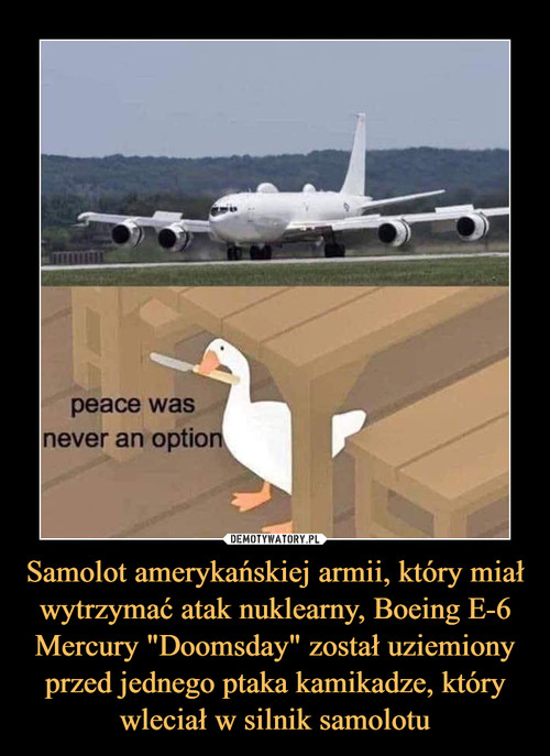 """Samolot amerykańskiej armii, który miał wytrzymać atak nuklearny, Boeing E-6 Mercury """"Doomsday"""" został uziemiony przed jednego ptaka kamikadze, który wleciał w silnik samolotu"""