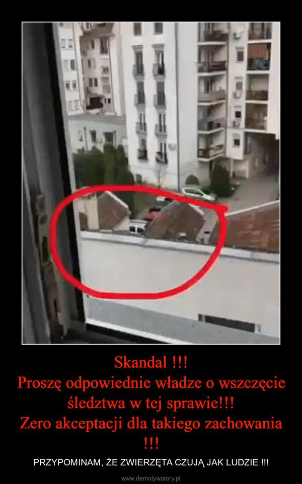 Skandal !!!Proszę odpowiednie władze o wszczęcie śledztwa w tej sprawie!!!Zero akceptacji dla takiego zachowania !!! – PRZYPOMINAM, ŻE ZWIERZĘTA CZUJĄ JAK LUDZIE !!!