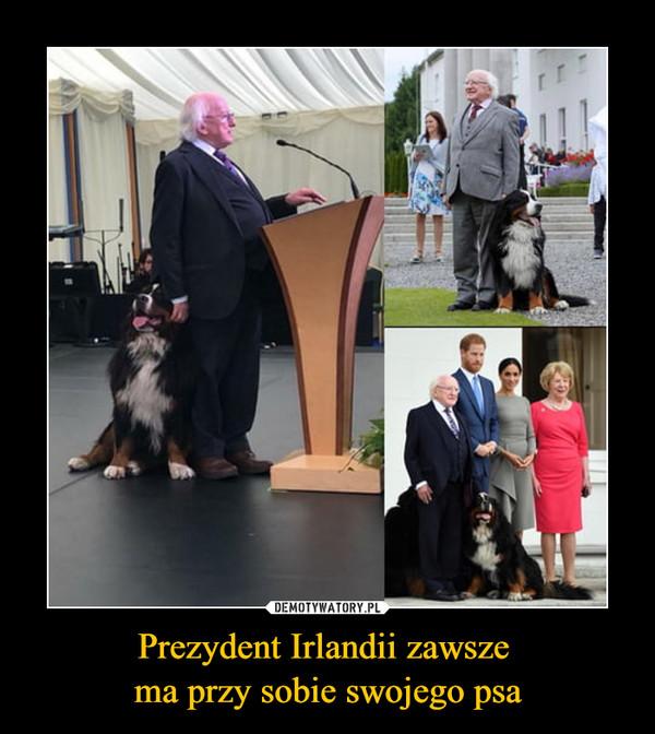 Prezydent Irlandii zawsze ma przy sobie swojego psa –