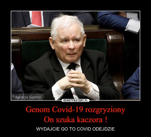 Genom Covid-19 rozgryzionyOn szuka kaczora ! – WYDAJCIE GO TO COVID ODEJDZIE
