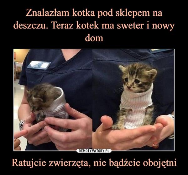 Ratujcie zwierzęta, nie bądźcie obojętni –