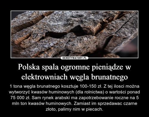 Polska spala ogromne pieniądze w elektrowniach węgla brunatnego