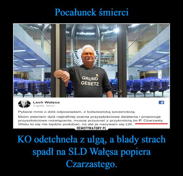 KO odetchneła z ulgą, a blady strach spadł na SLD Wałęsa popiera Czarzastego. –