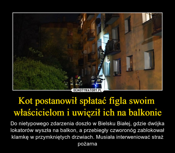 Kot postanowił spłatać figla swoim właścicielom i uwięził ich na balkonie – Do nietypowego zdarzenia doszło w Bielsku Białej, gdzie dwójka lokatorów wyszła na balkon, a przebiegły czworonóg zablokował klamkę w przymkniętych drzwiach. Musiała interweniować straż pożarna