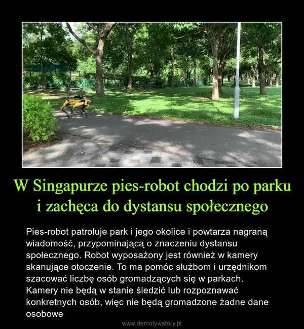 W Singapurze pies-robot chodzi po parku i zachęca do dystansu społecznego – Pies-robot patroluje park i jego okolice i powtarza nagraną wiadomość, przypominającą o znaczeniu dystansu społecznego. Robot wyposażony jest również w kamery skanujące otoczenie. To ma pomóc służbom i urzędnikom szacować liczbę osób gromadzących się w parkach. Kamery nie będą w stanie śledzić lub rozpoznawać konkretnych osób, więc nie będą gromadzone żadne dane osobowe