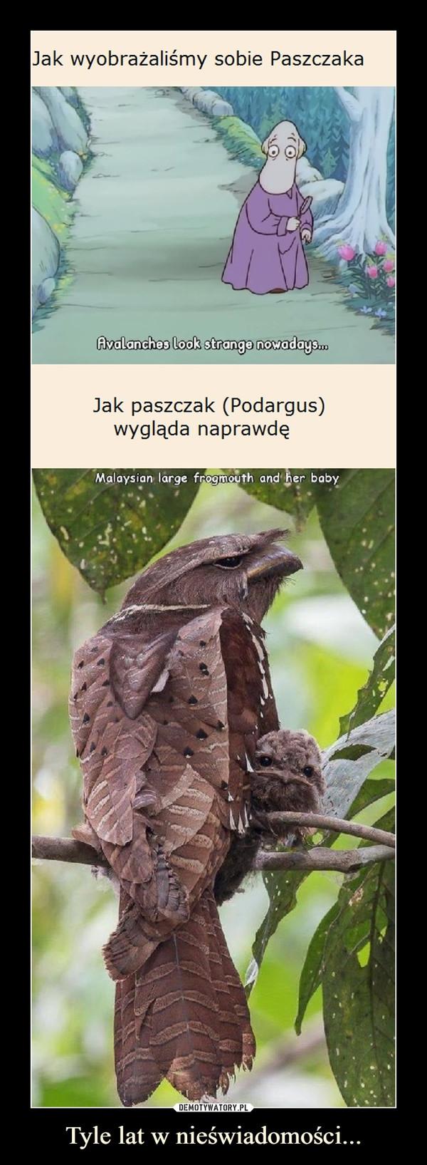 Tyle lat w nieświadomości... –  Jak wyobrażaliśmy sobie PaszczakaAvalanches look strange nowadays.Jak paszczak (Podargus)wygląda naprawdęMalaysian large frogmouth and her baby