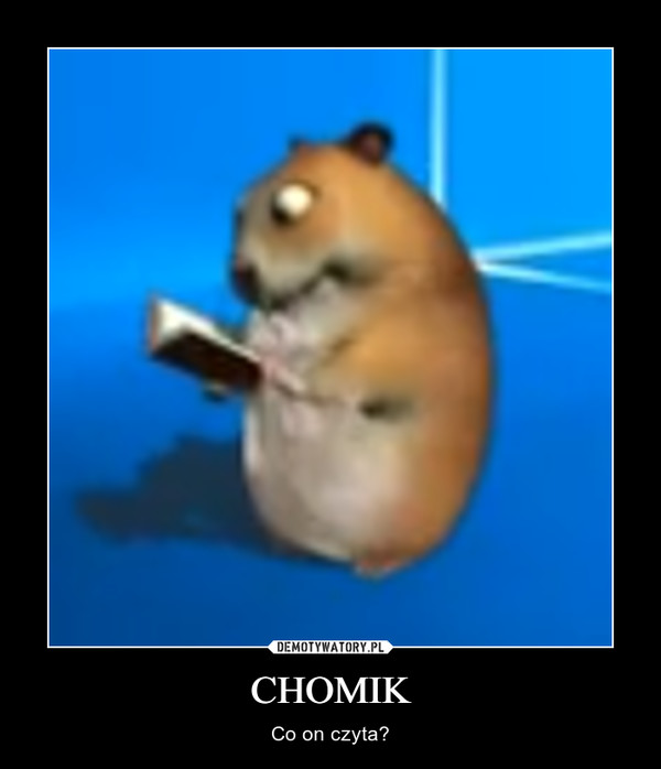 CHOMIK – Co on czyta?