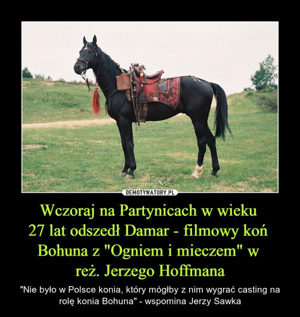 """Wczoraj na Partynicach w wieku 27 lat odszedł Damar - filmowy koń Bohuna z """"Ogniem i mieczem"""" w reż. Jerzego Hoffmana – """"Nie było w Polsce konia, który mógłby z nim wygrać casting na rolę konia Bohuna"""" - wspomina Jerzy Sawka"""