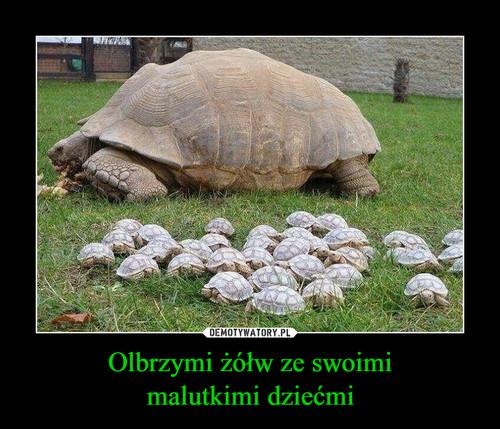 Olbrzymi żółw ze swoimi malutkimi dziećmi
